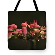 Insect. Tote Bag