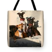 Italian Greyhounds Tote Bag