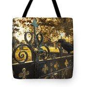 Jackdaw On Church Gates Tote Bag by Amanda Elwell