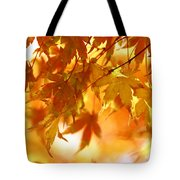 Japanese Maple In Fall Tote Bag