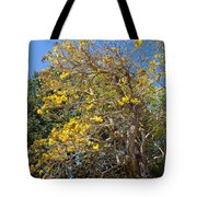 Jerusalem Thorn Tree Tote Bag