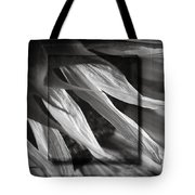 Just Shy In Black And White Tote Bag