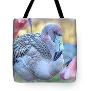 Juvenile Flamingo Tote Bag