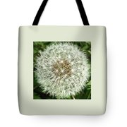 Kind Such As The Flower   Tote Bag