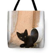 Kitten In A Pipe Tote Bag