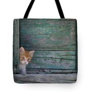 Kitten Peeking Out Tote Bag