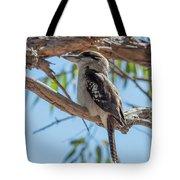 Kookaburra On A Branch Tote Bag