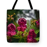 Lady Slipper Orchid Dan146 Tote Bag