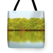 Lagoon On Santa Cruz Island In Galapagos Tote Bag