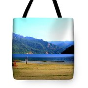 Lake Crescent Wa Tote Bag