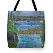 Lake Okahumpka Park Tote Bag
