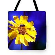 Lakeside Daisy Tote Bag
