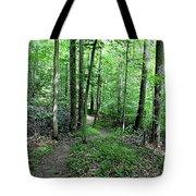 Lakeside Trail Winding Path - Yellowwood Lake Tote Bag