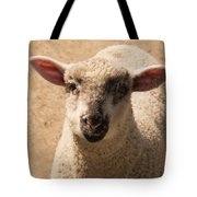 Lamb Looking Cute. Tote Bag