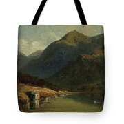 Landscape From Brienzersee Tote Bag