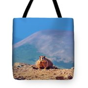 Landscape With Marmot Tote Bag