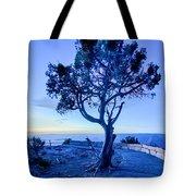 Landscapes At Grand Canyon Arizona Tote Bag