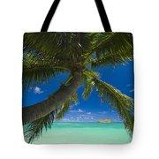 Lanikai Palm Tree Tote Bag