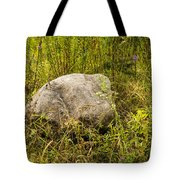 Large Rock And Purple Asters Tote Bag