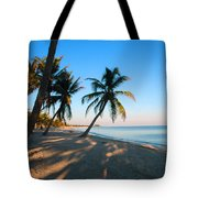 Last Sunbeams Tote Bag