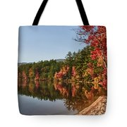 Late Afternoon On Lake Chocorua Tote Bag