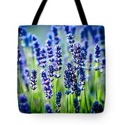 Lavander Flowers In Lavender Field Tote Bag