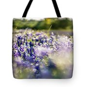 Lavender Purple Flower Blooming On Side Road In Texas At Sunset Tote Bag