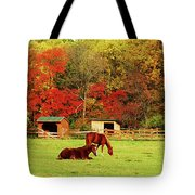 Lazy Autumn Day Tote Bag
