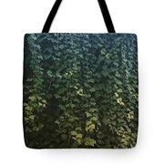 Leaf Of The Ivy   Tote Bag