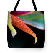 Leaf Study Iv Tote Bag