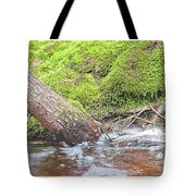 Leaning Tree Trunk By A Stream Tote Bag