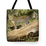Leopard In The Forest Tote Bag