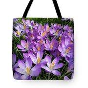 Let It Spring Tote Bag
