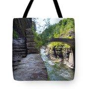 Letchworth State Park Tote Bag