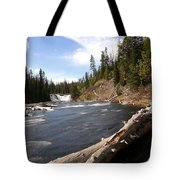 Lewis Falls Tote Bag