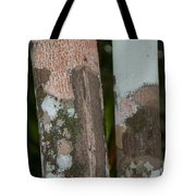 Lichen On The Trees At The Coba Ruins  Tote Bag