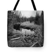Liesijoki.  Seitseminen National Park Tote Bag
