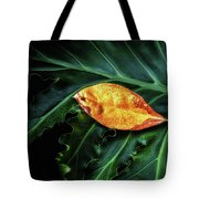 Life Cycle Still Life Tote Bag