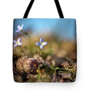 Life Delicate And Strong Tote Bag
