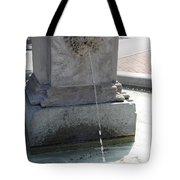 Lion Fountain Tote Bag