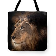 Lion King Of The Jungle Tote Bag by James Sage