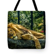 Lion Relaxing Tote Bag