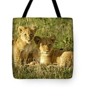 Little Lions Tote Bag