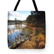 Loch Garten Tote Bag