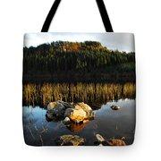 Loch Lundie Tote Bag