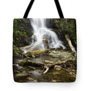 Log Hollow Falls North Carolina Tote Bag