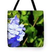 Lone Ant In A Big World Tote Bag