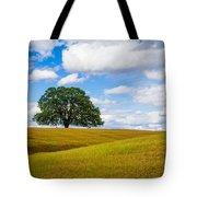 Lone Oak Tote Bag by Vincent Bonafede