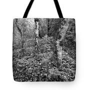 Lone Ranch Wood 4937 Tote Bag