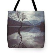 Lone Tree At Llyn Padarn Tote Bag